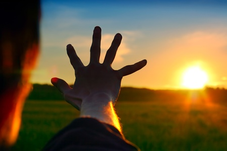 against the sun: Silhouette of a Hand against a Sunset in the Summer Field
