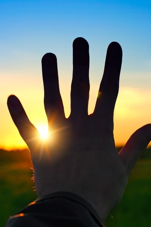Silhouette of a Hand against a Sunset in the Summer Field photo