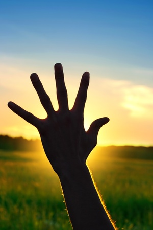 Silhouette of a Hand against a Sunset in the Summer Field Stock Photo - 17693969