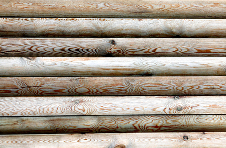 sameness: The wooden logs texture with natural patterns