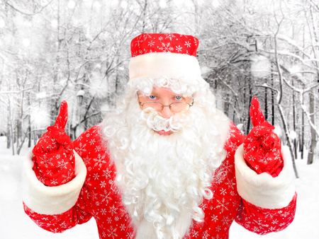 Santa Claus in the Winter Forest photo