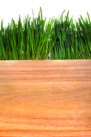 Grass and Wooden Board Isolated on the White Background photo