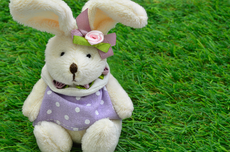 cuddly toy: Dressed Easter bunny sitting on green grass, close up, horizontal