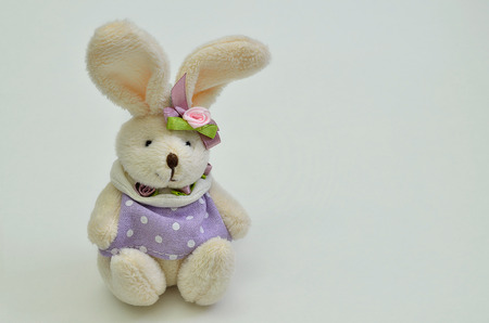 cuddly toy: Dressed Easter bunny, female with purple dress, sitting on white background, horizontal, close up
