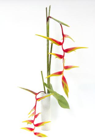 ikebana asia thai flower decoration photo