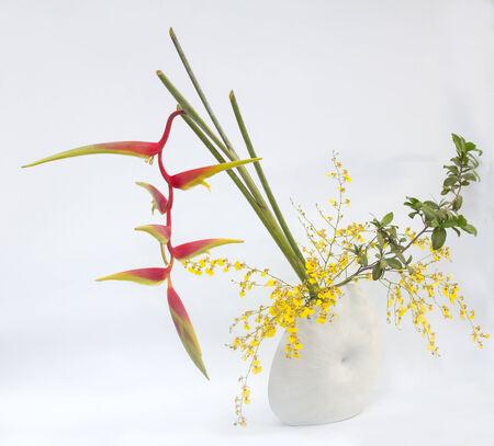 ikebana asia thai flower decoration bird of paradise photo