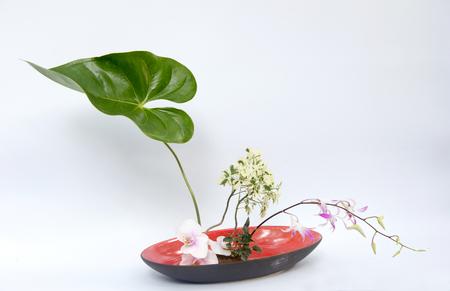 ikebana: ikebana asia thai flower decoration