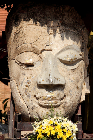 buddha statue head with  flower  in shadow photo