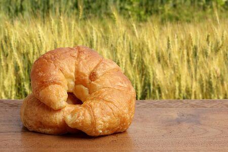 gold teakwood: croissant bakery on teakwood table lighting and barley field background