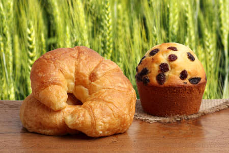 gold teakwood: croissant muffin bakery on teakwood table lighting and barley field background