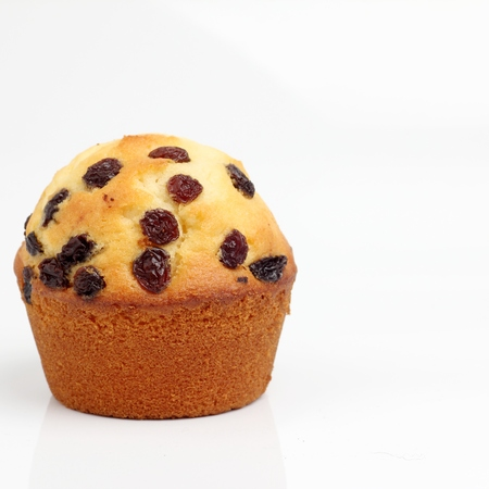 blueberry muffin: one brown muffin bakery on white background square format