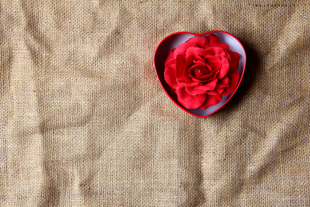 crease: red rose in iron box shape heart form on crease burlap cloth . Lots of copy space Stock Photo