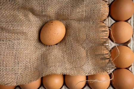 eggshell: egg on burlap cloth with paper tray eggshell