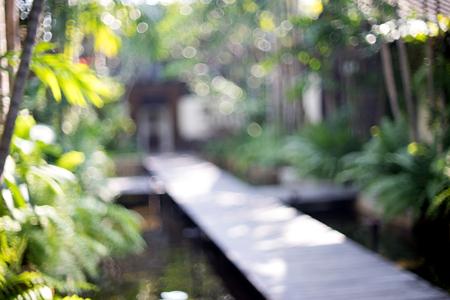 walkway: blur resort spa wood walkway green leaf tree