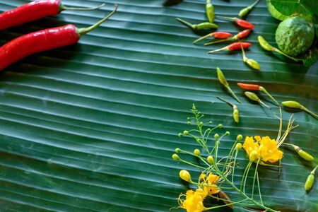 Banana leaf background green colour, red chilli and some herb.