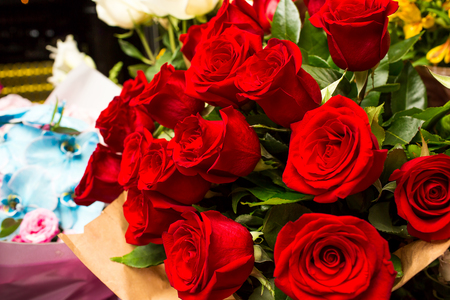love declaration: Bright bouquet of red roses wrapped in paper.