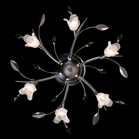 Classic chandelier in flower style isolated on black background.