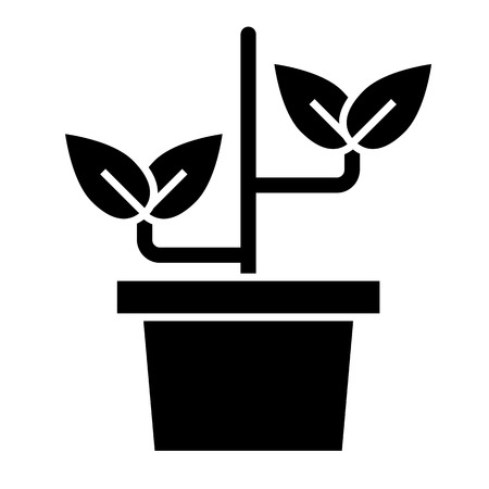 Plant in pot solid icon. Sprout vector illustration isolated on white. Gardening glyph style design, designed for web and app. Eps 10