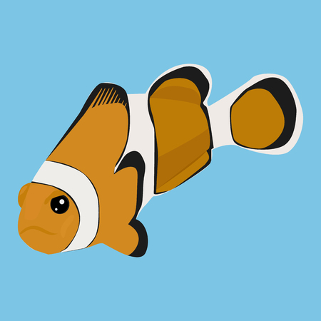 Clownfish vector icon on a blue background. Anemone fish illustration isolated on blue. Exotic fish realistic style design, designed for web and app.
