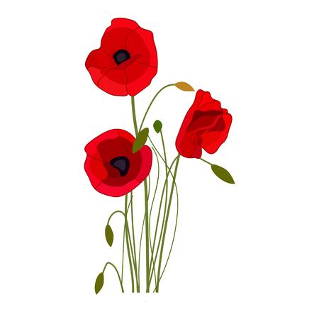 Icône de vecteur de coquelicots sur fond blanc. Illustration de fleur isolée sur blanc. Conception de style réaliste de fleurs sauvages, conçue pour le Web et l'application. Eps 10.
