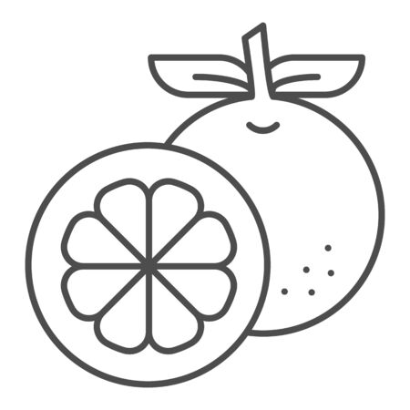 Orange thin line icon. Fresh fruit vector illustration isolated on white. Healthy vitamin outline style design, designed for web and app.