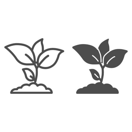 Plant sprouts line and solid icon, agriculture concept, Young growth with leaves sign on white background, seedling icon in outline style for mobile concept and web design. Vector graphics.