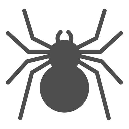 Spider solid icon, Insects concept, predatory arachnid sign on white background, classic spider icon in glyph style for mobile concept and web design. Vector graphics.