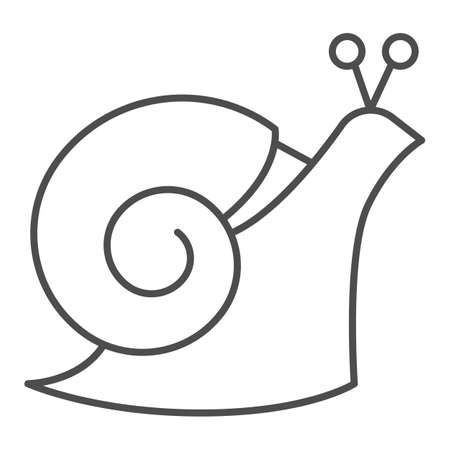 Snail thin line icon, wildlife concept, mollusk with spiral shell sign on white background, Garden snail icon in outline style for mobile concept and web design. Vector graphics. Illustration