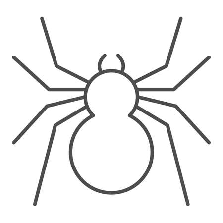 Spider thin line icon, Insects concept, predatory arachnid sign on white background, classic spider icon in outline style for mobile concept and web design. Vector graphics.
