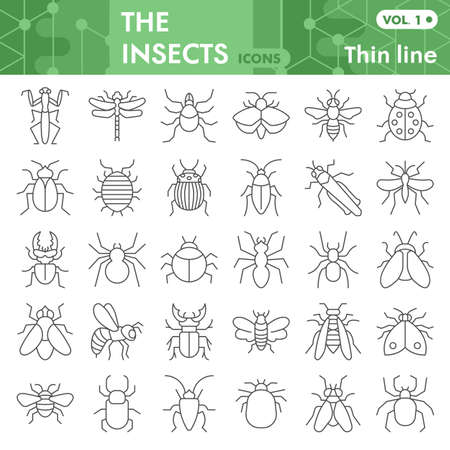 Insects thin line icon set, bugs, beetles, termites symbols collection or sketches. Insects silhouettes linear style signs for web and app. Vector graphics isolated on white background. Vector Illustration