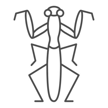 Mantis thin line icon, Insects concept, Beetle sign on white background, praying mantis icon in outline style for mobile concept and web design. Vector graphics.