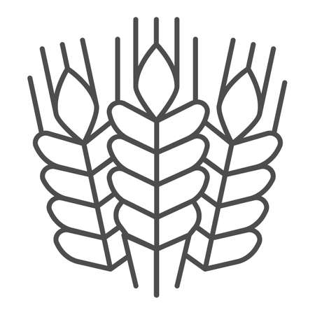 Grain ears thin line icon, Craft beer concept, wheat grains sign on white background, Bunches with grains icon in outline style for mobile concept and web design. Vector graphics. Ilustração