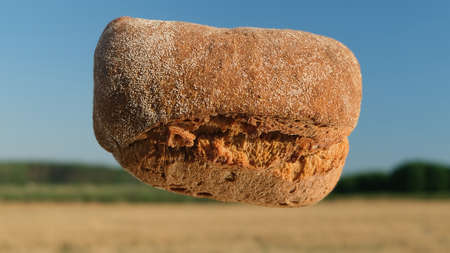 Wheat loaf in air on background of fields. Homemade baking concept. Fresh baked bread on hay and sky background. Harvest in village concept. Flying bread close-up. 版權商用圖片