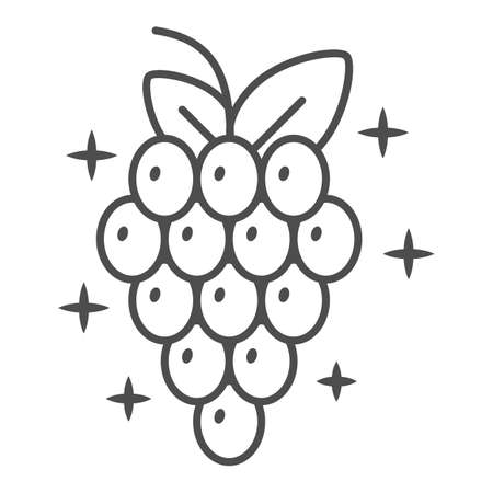 Bunch of grapes thin line icon, Wine festival concept, Wine Grape sign on white background, Grape with leaves icon in outline style for mobile concept and web design. Vector graphics.
