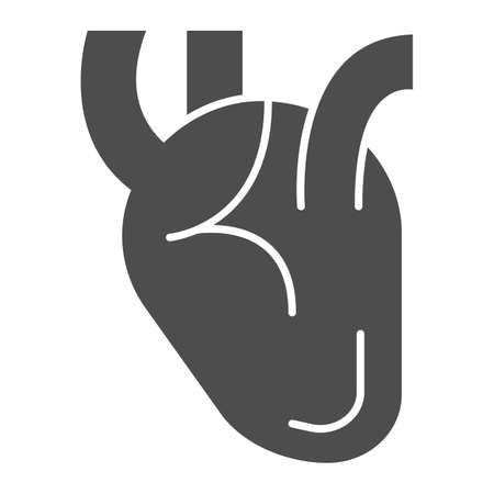 Heart solid icon, Medical concept, Human organ sign on white background, Realistic medical heart icon in glyph style for mobile concept and web design. Vector graphics.