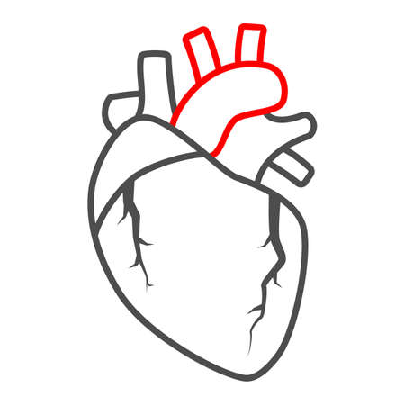 Heart valve problem thin line icon, body pain concept, heart valves disease vector sign on white background, outline style icon for mobile concept and web design. Vector graphics.