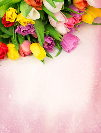 mother: bouquet of tulips flowers on a drawing background Stock Photo