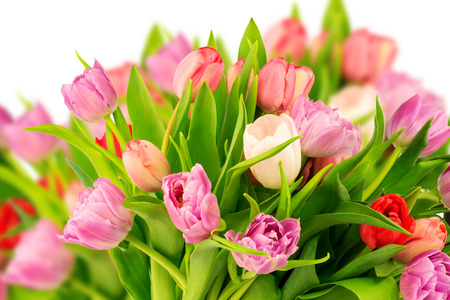 bouquet of tulips mother birthday gift valentine spring background selective soft focus toned photo