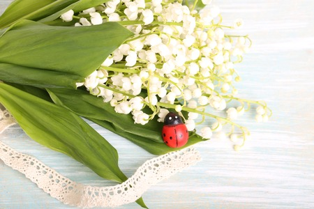 mayflower: ladybug spring summer lily of the valley painted wood selective soft focus Stock Photo