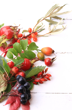 autumn berries for tea on a white wooden background rosehip rowan hawthorn sea buckthorn black chokeberry