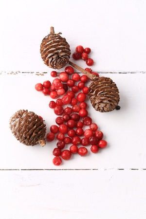 fir cones: Christmas decorations background fir cones cranberries rustic winter white wooden Stock Photo