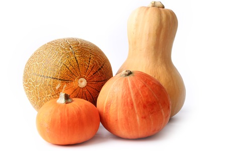 farm background: pumpkin and melon isolated on a white background