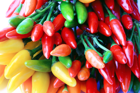spicey: hot chili peppers isolated on white background Stock Photo