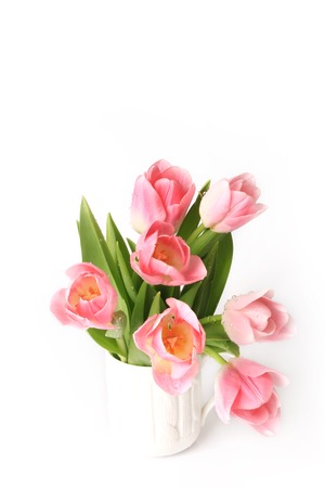 matherday: Pink tulips isolated on white background spring summer mothers day