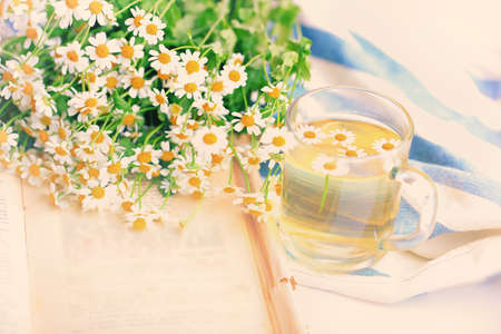 chamomile tea: summer blurred background of camomile tea and old book tenderness spring sunbeams