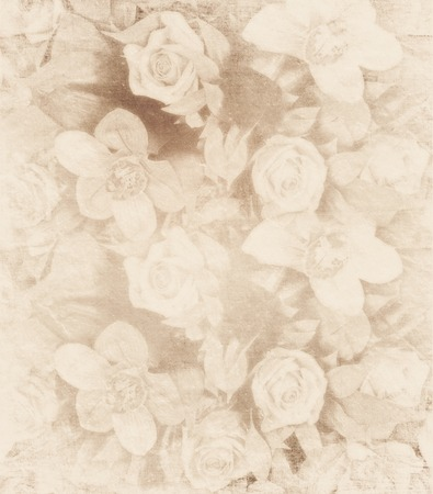 shabby chic background: Romantic floral vintage shabby chic background Stock Photo