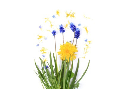 spring flowers on a white background vintage Stock Photo