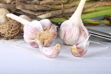 spiciness: garlic organic farm products selective focus Stock Photo