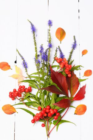 Autumn decoration of the berries and flowers on white wooden background view from above