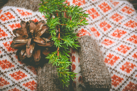 warm christmas background. winter composition knitted mittens, spruce branches and cones